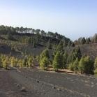 08 De volcà en volcà 3