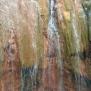 15 Cascada de Colores 3