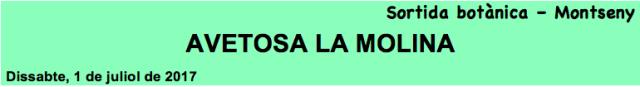 AVETOSA MOLINA cap1