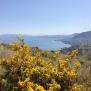 01 Tot bucòlic mar i primavera