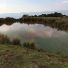 04 La bassa del Bellit
