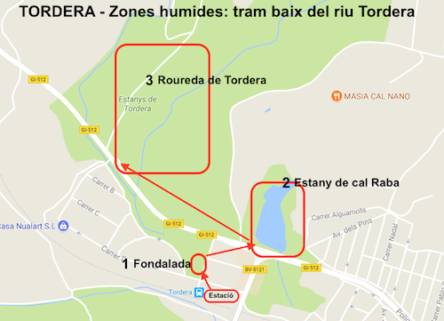 TORDERA zones humides
